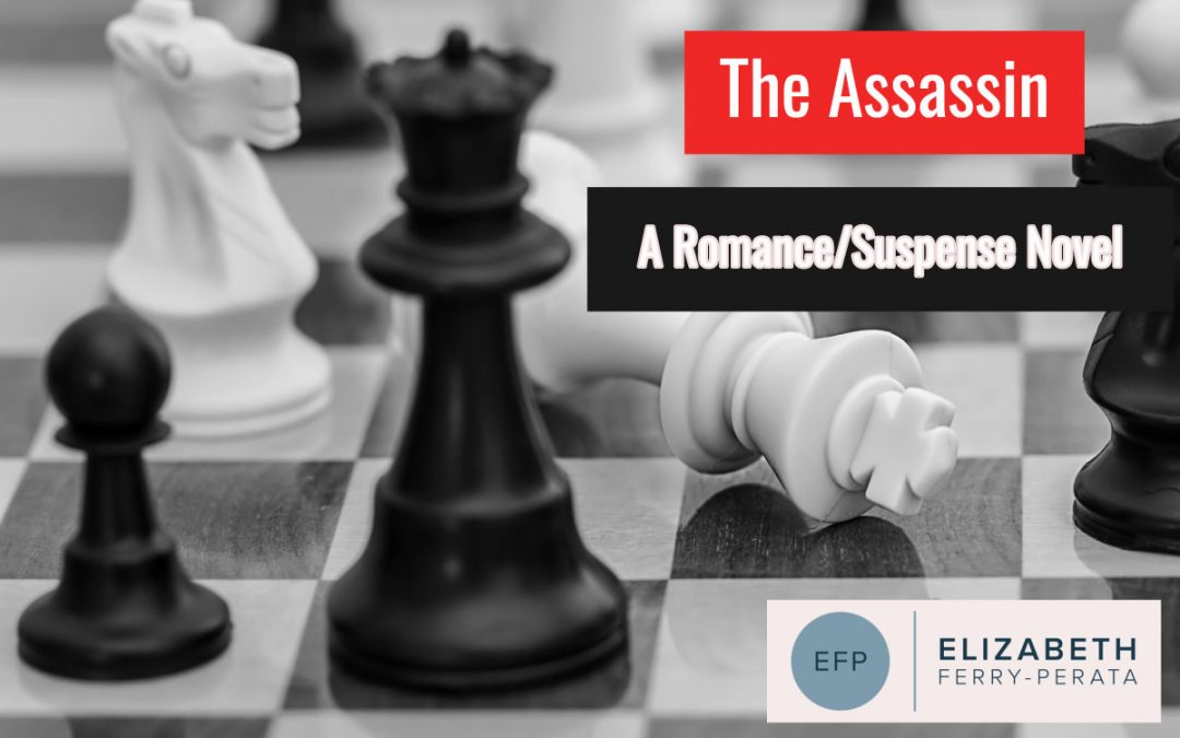 NaNoWrimo Writing Challenge: The Assassin